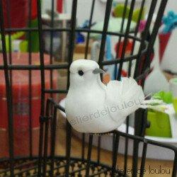 Acheter colombe décoration | achat colombes déco
